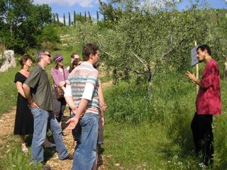Italian cookery walk